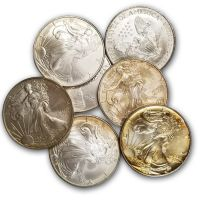 1oz. American Silver Eagle - Problem (Date of Our Choice)